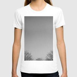 Gris (grey) T-shirt