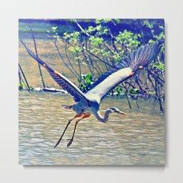 Flying (Blue Heron) Metal Print
