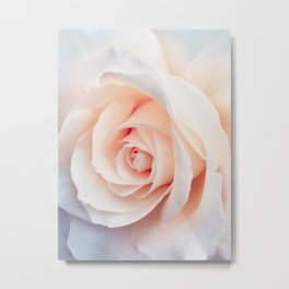 Rose | Flowers Photography | Spring | Blush Pink | Love Metal Print