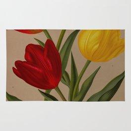 Arendsen, Arentine H. (1836-1915) - Haarlem's Flora 1872 - Single Early Tulips 4 Rug