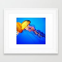 jelly fish Framed Art Prints featuring Jelly Fish by Amanda Creek Creative