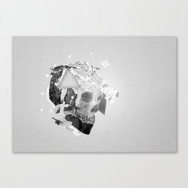 Strange Shapes Canvas Print