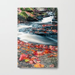 Fall Foliage and Waterfall Chesterfield Gorge Metal Print