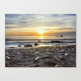 Sunset with the Seals Canvas Print