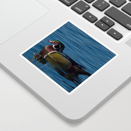 Colorful Wood Duck Sticker