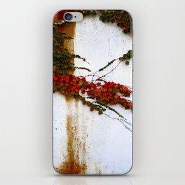 Impermanence  iPhone Skin