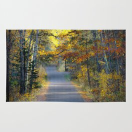 Itasca in the fall Rug