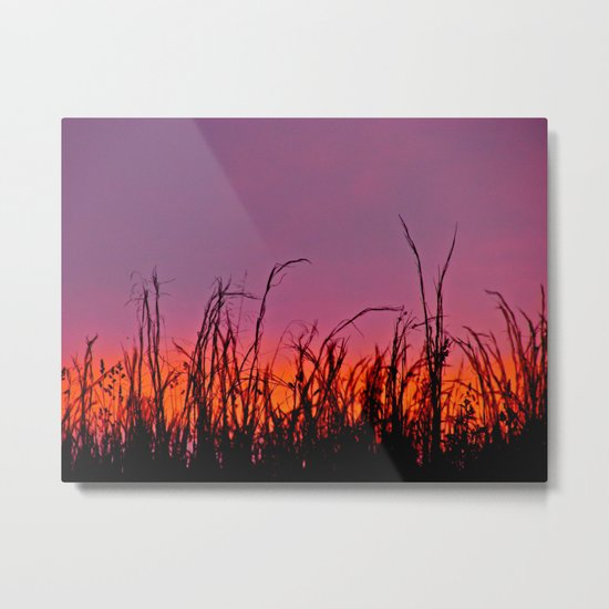 Sunset From a Dream Metal Print