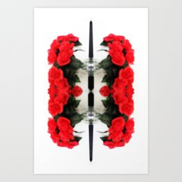 Summer Red Skulls 2012 Art Print