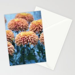 Longwood Gardens Autumn Series 221 Stationery Cards