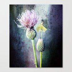 Dance Upon the Thistle Canvas Print