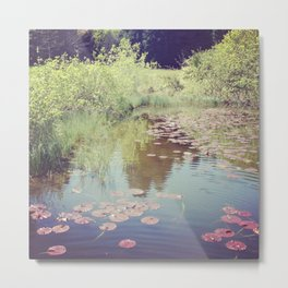 Lillypads Metal Print