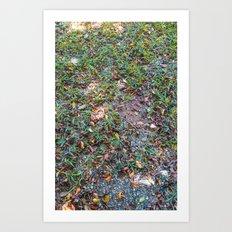 Green on the ground Art Print
