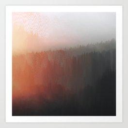 Forest Haze Art Print