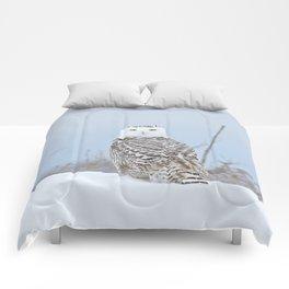 Adrift amid the drifts Comforters