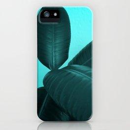 Ficus Elastica #3 #art #society6 iPhone Case