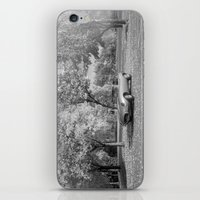jaguar iPhone & iPod Skins featuring Jaguar by Christina Nelson