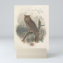 027 Kennicotts Screech Owl scops kennicotti4 Mini Art Print