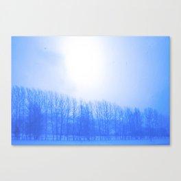 Winter 7 Canvas Print