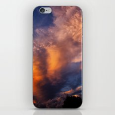 Winged Sunset iPhone & iPod Skin