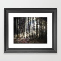 Woodland Night Framed Art Print