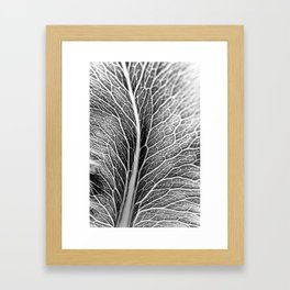 Black And White Leaf Framed Art Print