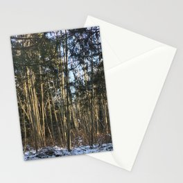 Winter at Home Stationery Cards