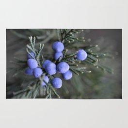 Macro Juniper Berries Rug