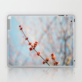 spring Laptop & iPad Skin