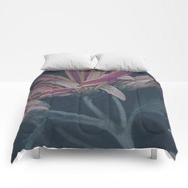 Ripe Comforters
