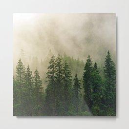 Ever-Green Metal Print
