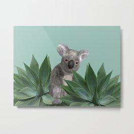 Koala Bear between Agave leaves Metal Print