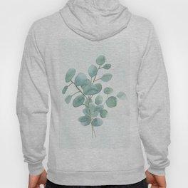 Eucalyptus Silver Dollar Hoody