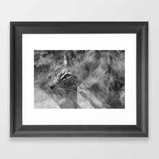 Broken Lynx Framed Art Print