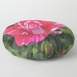 """A Rose Named """"Neil Diamond"""" Floor Pillow"""