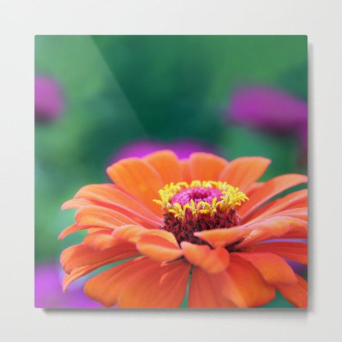 Orange Gerbera Floral Flower Metal Print