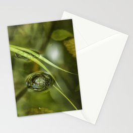 A Bubble on the Surface of a Pond Stationery Cards