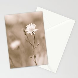 This One Stationery Cards