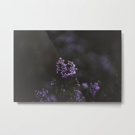 Flower Photography by Quentin Burbach Metal Print