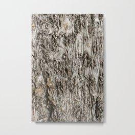 Grey Bark Metal Print