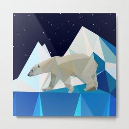 polar night Metal Print