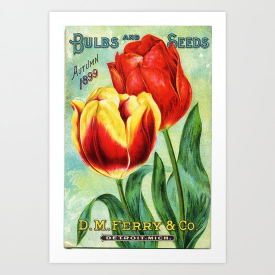 Antique Tulips Art Print