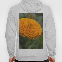 Calendula Flower Hoody