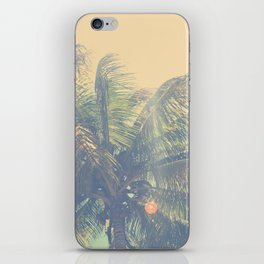 coconut palm trees  iPhone Skin