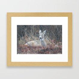 that deer Framed Art Print