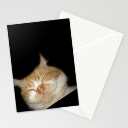 Funny Sleeping Cat Stationery Cards