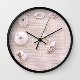 Urchins and seashells nautical design on textured background. Wall Clock