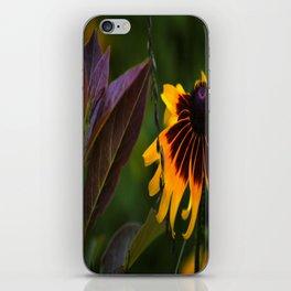 Burgundy BFFS! iPhone Skin