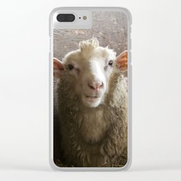 Cute Smiling Sheep Photo Clear iPhone Case