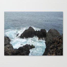 wild Tenerife Canvas Print